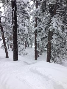Winter returns to Tahoe.